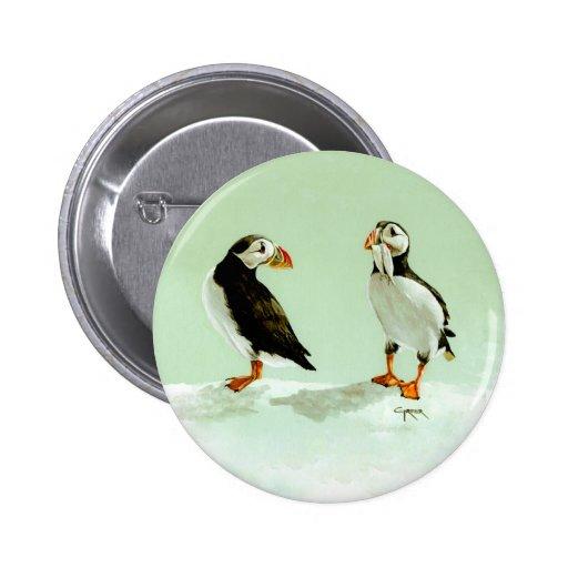 Pares de pájaros antárticos del frailecillo pin
