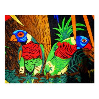 Pares de Parakeets coloridos Postales