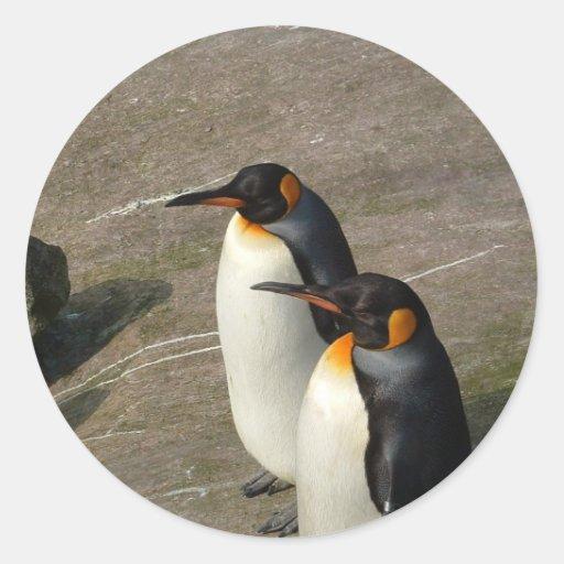 Pares de pegatina de los pingüinos