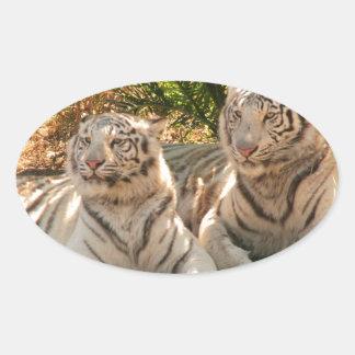 Pares de pegatinas blancos de los tigres calcomania óval