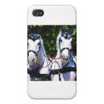 Pares de Percherons blanco iPhone 4 Protectores