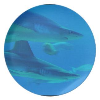 Pares de placa de los tiburones platos para fiestas