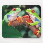 Pares de Red Eye Treefrog, callidryas de Agalychin Tapetes De Raton