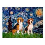 Pares del beagle - noche estrellada tarjeta postal