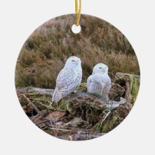 Pares del búho Nevado Ornaments Para Arbol De Navidad