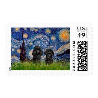 Pares del caniche (negro) - noche estrellada sello
