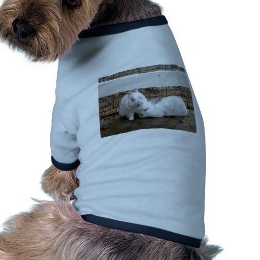 Pares del conejito camisetas de perrito