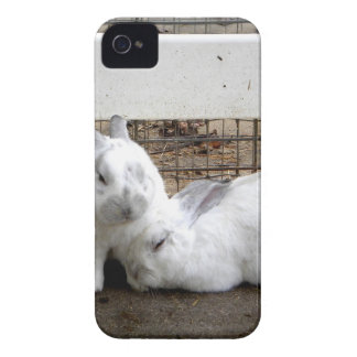 Pares del conejito carcasa para iPhone 4 de Case-Mate