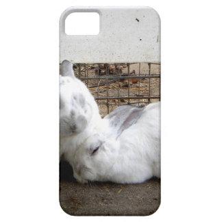 Pares del conejito funda para iPhone SE/5/5s