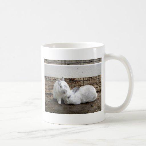 Pares del conejito taza básica blanca