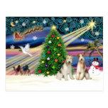 PARES del fox terrier del Magia-Alambre de Navidad Postal