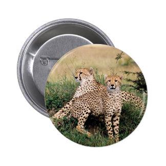 Pares del guepardo pins