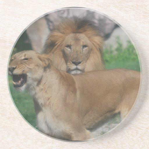 Pares del león posavasos para bebidas