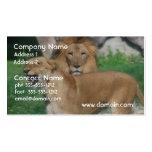 Pares del león tarjetas de visita