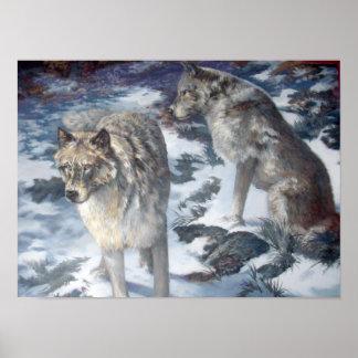 Pares del lobo de Alaska en el poster del invierno