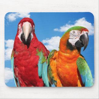 Pares del Macaw Alfombrillas De Raton