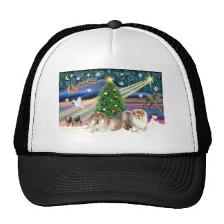 Pares del Magia-Perro chino de Navidad Gorro De Camionero