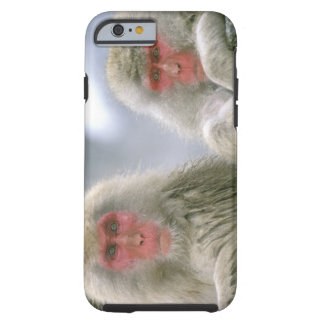 Pares del mono de la nieve, Macaque japonés, Funda De iPhone 6 Tough