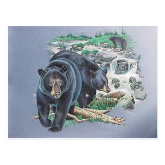 Pares del oso negro en el desierto postal