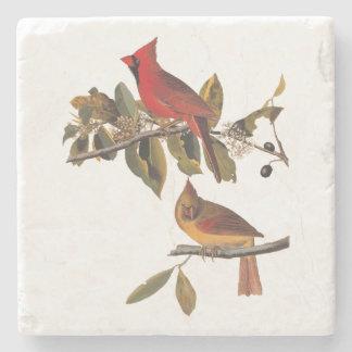 Pares del pájaro del pájaro cardinal en árbol de posavasos de piedra