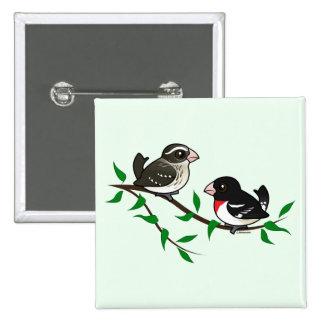 Pares del pájaro del Rosa-breasted Pin Cuadrado