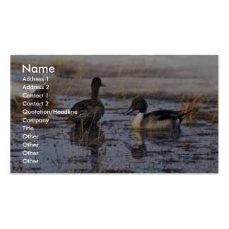Pares del pato del pato rojizo tarjetas de visita