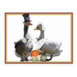Pares del pato del peregrino de la acción de postal