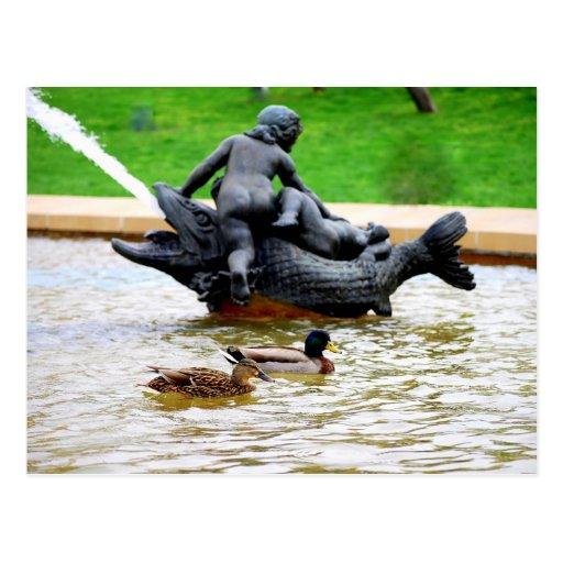 Pares del pato silvestre en J.C. Nichols Fountain, Postal