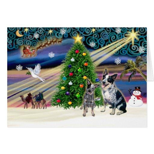 Pares del perro del ganado de Navidad Magia-Aussie Tarjeta De Felicitación