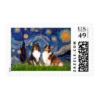 Pares del perro pastor de Shetland - noche Sellos