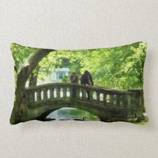 Pares en el puente en parque almohadas