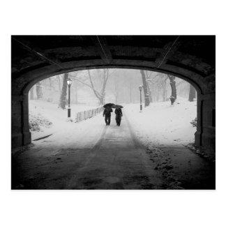 Pares en la nevada, Central Park Postales