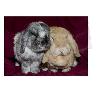 Pares espigados del conejo del Lop Tarjeta De Felicitación