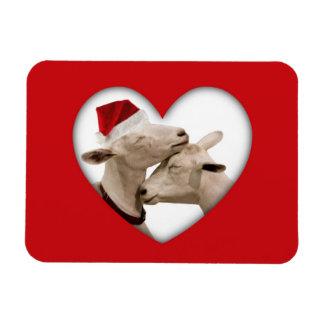 Pares lindos de la cabra del navidad imanes rectangulares