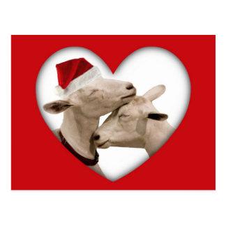 Pares lindos de la cabra del navidad tarjetas postales