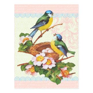Pares y jerarquía lindos del pájaro del vintage de
