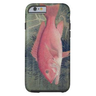 Pargo rojo, de 'pescados del estado unido funda resistente iPhone 6