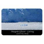 Parida del glaciar de Margerie/Glacier Bay Alaska Imanes Rectangulares