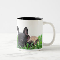 Paris and Monaco in the grass Two-Tone Coffee Mug