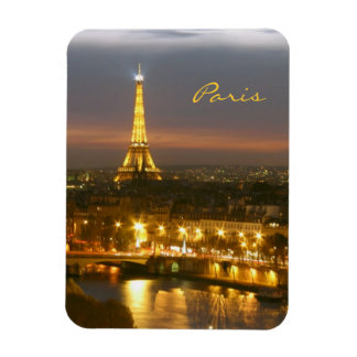 Paris by Night Vinyl Magnet