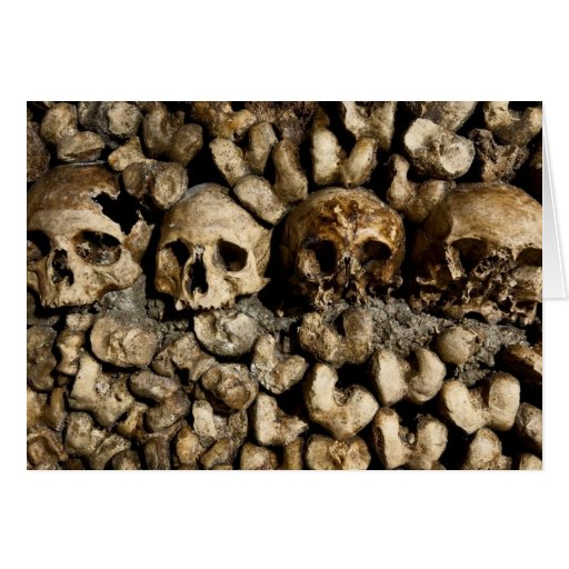 Paris Catacomb Skulls Card
