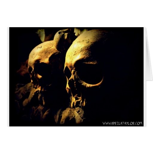 Paris Catacombs by April A Taylor Card
