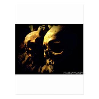 Paris Catacombs by April A Taylor Postcard
