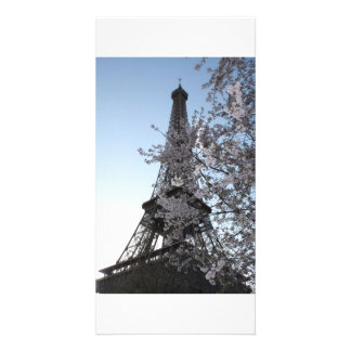 Paris Cherry Blossoms Card