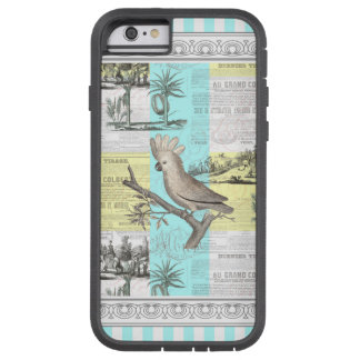 Paris Cockatoo's Colonial Dream Tough Xtreme iPhone 6 Case