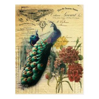 paris fashion girly vintage peacock  floral postcard