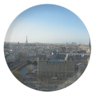 Paris from Notre-Dame Plate
