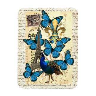 Paris peacock and butterflies magnets