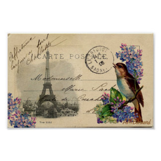 Paris Postcard Bird on Lilacs Poster or Print
