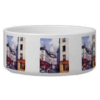 Paris Street Bowl